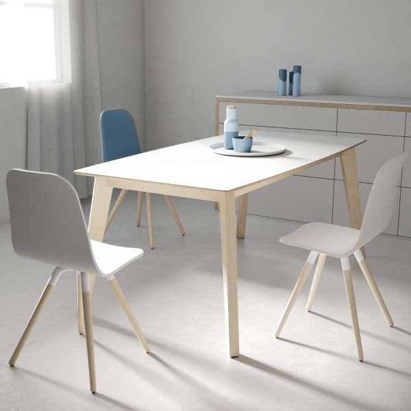 table moderne extensible en verre forme rectangle. Black Bedroom Furniture Sets. Home Design Ideas