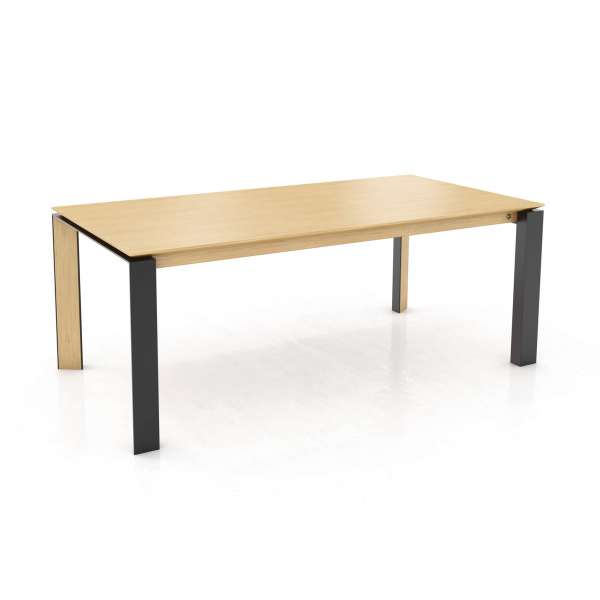 table moderne extensible en bois massif et m tal oxford pb3 mobitec 4. Black Bedroom Furniture Sets. Home Design Ideas